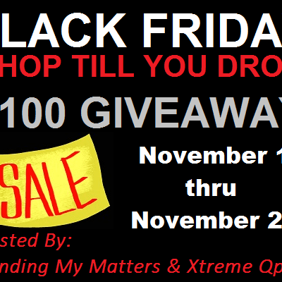 Black Friday 2013 Shop Till You Drop $100 Giveaway