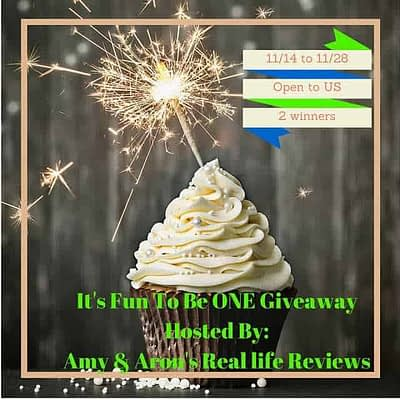 Fun To Be One 2015 Giveaway