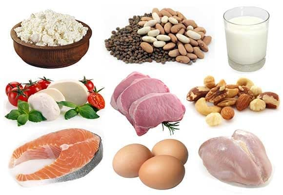 protein rich foods image