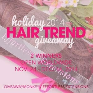 Hair Extensions – Holiday 2014 Hair Trend Giveaway